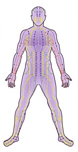 Meridian channels in the body