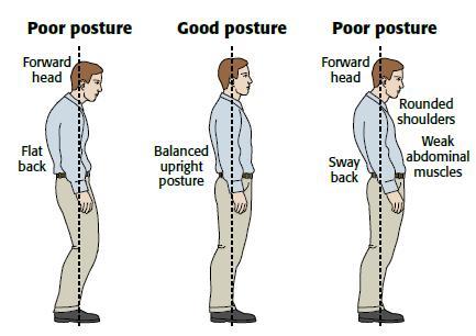 Healthwise Online posture